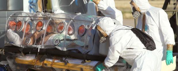 Новосибирские ученые к 2015 году закончат тестовые испытания лекарства от Эболы