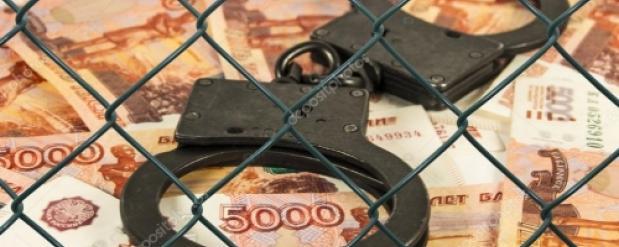 Новосибирского общественника обвиняют в присвоении субсидий на миллион