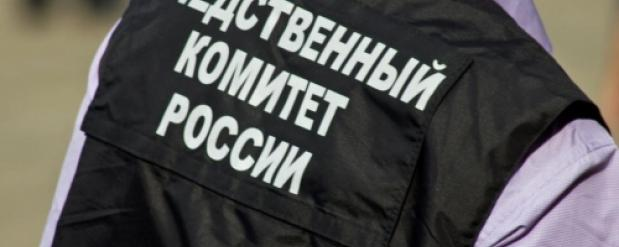 В Новосибирской области будут судить парня, который убил кувалдой свою беременную девушку из-за любовницы
