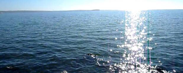 Можно купаться, водичка потеплела